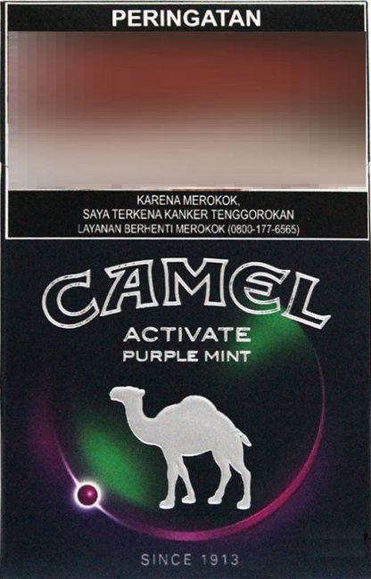 Image of Camel Activate Purple Mint capsule cigarette.